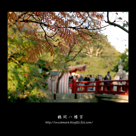 walks_031_03.jpg