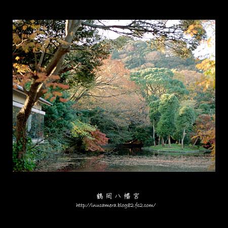 walks_031_04.jpg