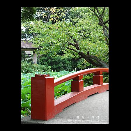 walks_031_09.jpg