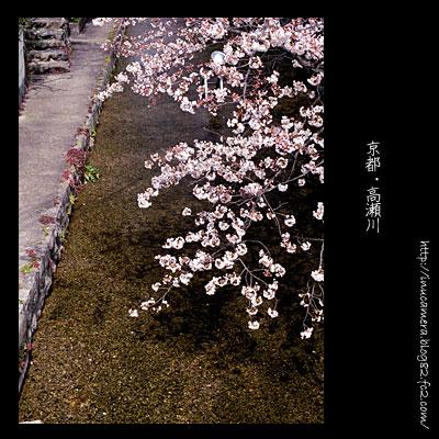 walks_032_03.jpg