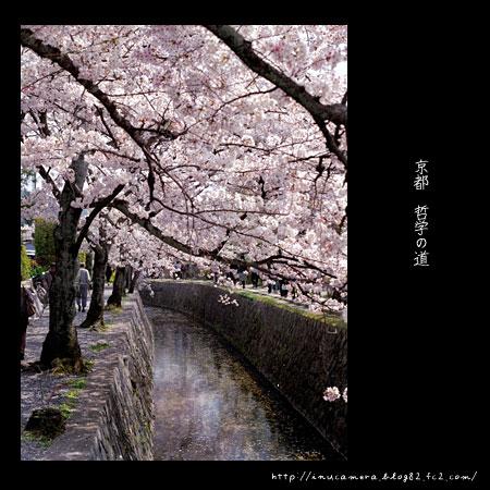 walks_033_02.jpg