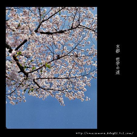walks_033_03.jpg