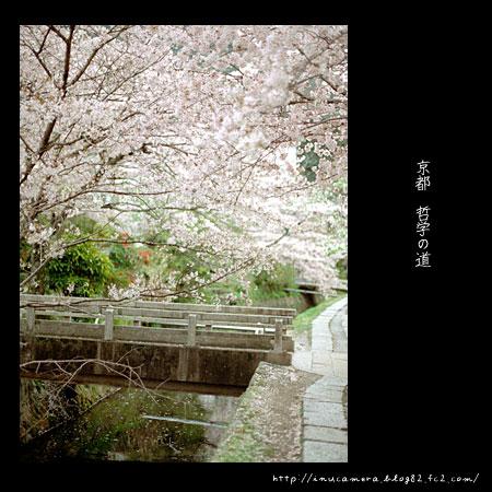 walks_033_07.jpg