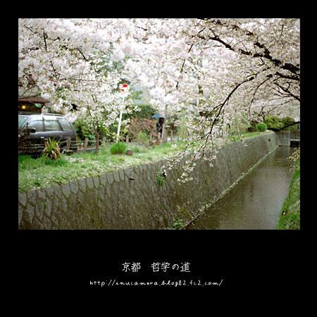 walks_033_08.jpg