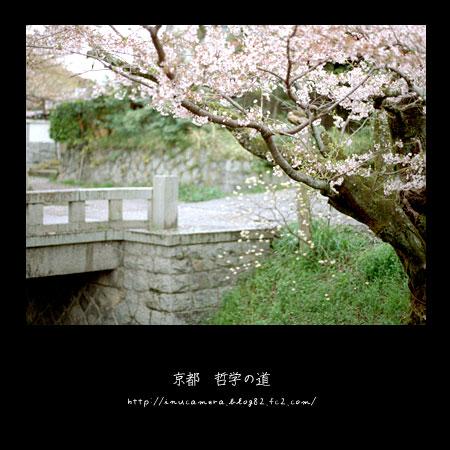 walks_033_09.jpg