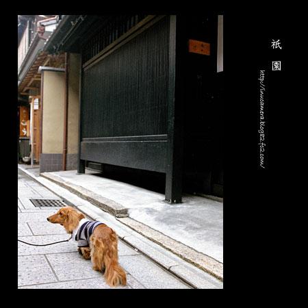 walks_21_4.jpg