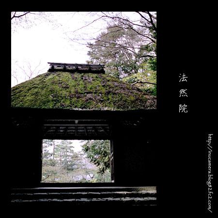 walks_24_4.jpg