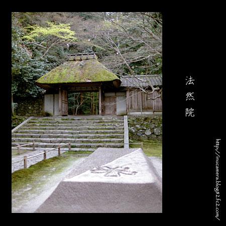 walks_24_6.jpg
