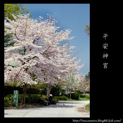 walks_25_10.jpg