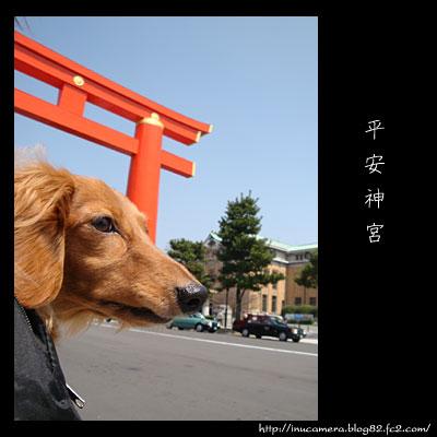 walks_25_4.jpg