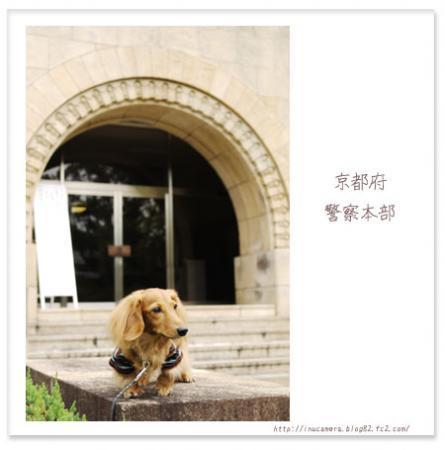 walks_52_02.jpg