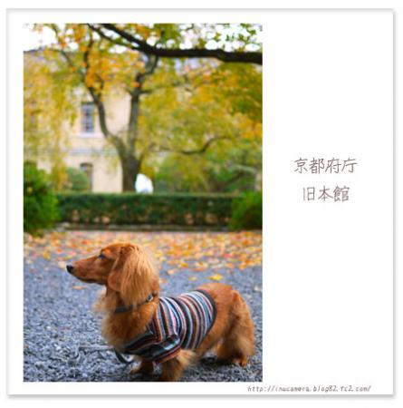walks_52_09.jpg