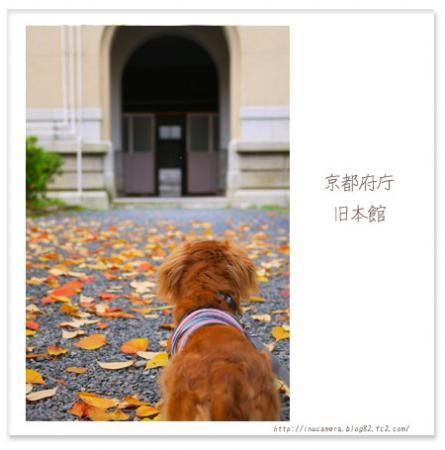 walks_52_12.jpg