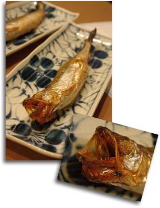 きゅうり魚