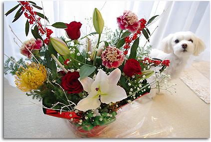 アンと花束