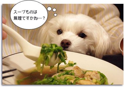 芹と鶏肉のスープ