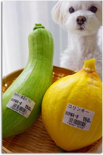 アンと面白野菜。
