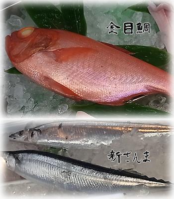 本日の魚0812