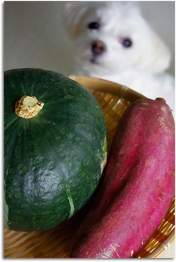 アンとお野菜
