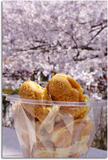 桜とたい焼き君