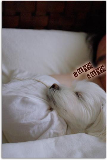 枕 on 腕枕