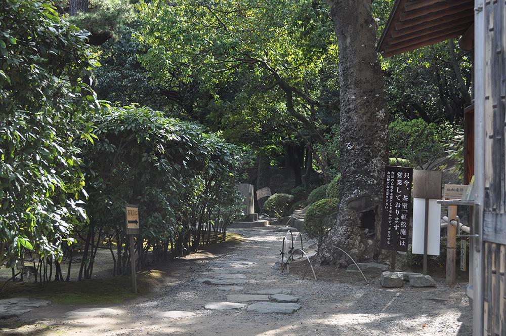 momijiwakayama (6)