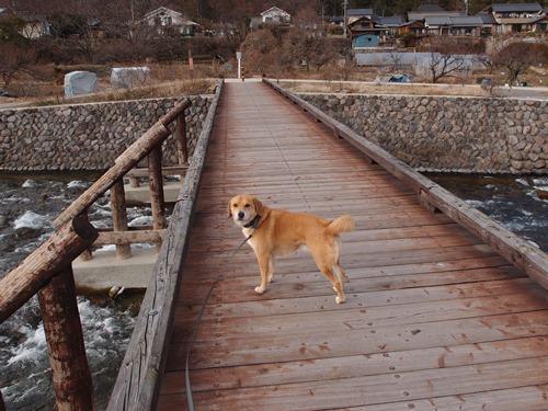 木の橋とらく