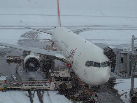 JAL搭乗機