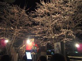 0410夜桜祭り4