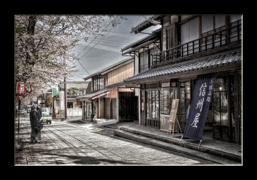 城下町の桜2