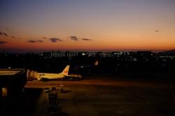 JAL_DSCF1286.jpg