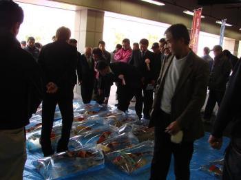 広島若鯉品評会2010 (11)