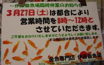 2010.3.17ブログ (9)