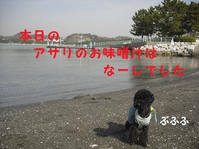 CIMG2333.jpg