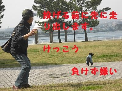 CIMG2353.jpg