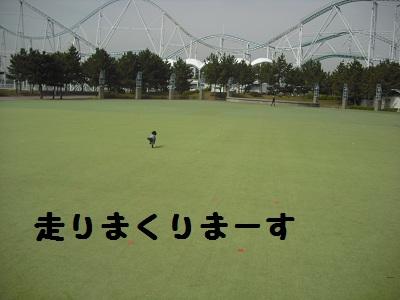 CIMG2371.jpg