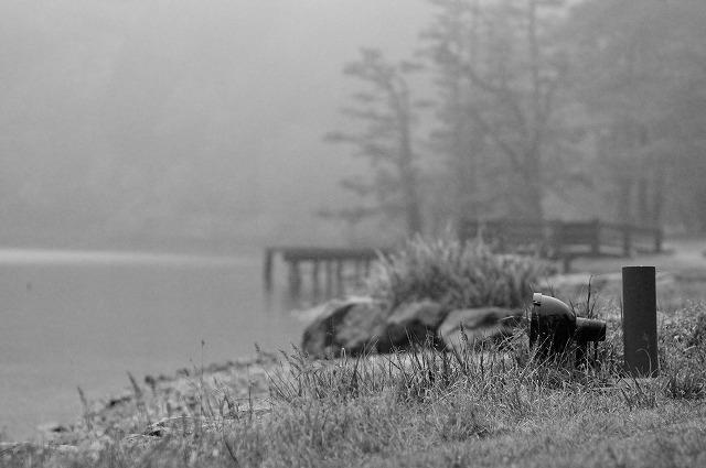 霧雨の中で