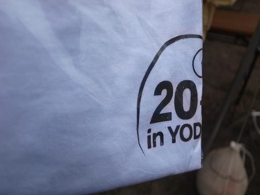 今年のTシャツは白