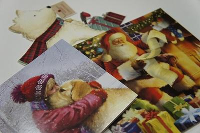 _クリスマスカード2013