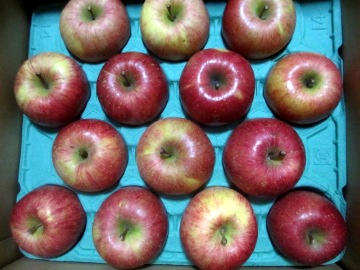 まさひろりんご3