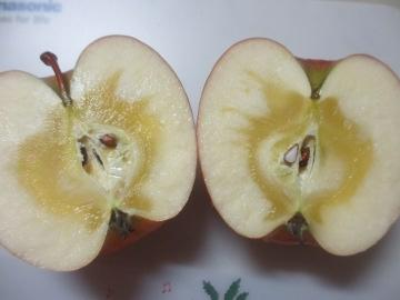 まさひろりんご4