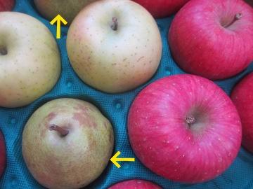 ヨメッコさんちのりんご2