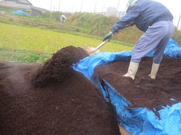 初荷の堆肥4