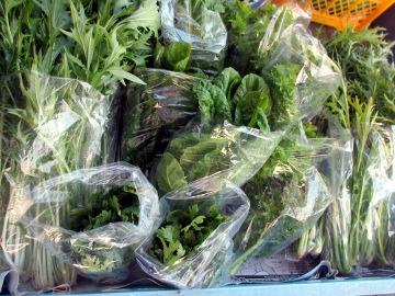 野菜の初荷4