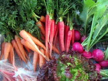 野菜の初荷2