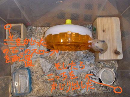 2010/6/18時点の白ちゃん宅の図