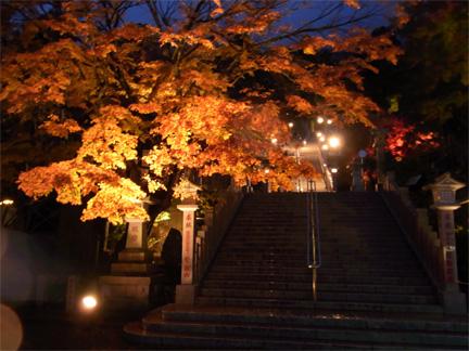 阿夫利神社紅葉ライトアップの図