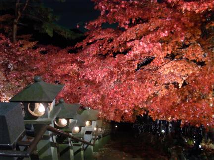大山寺紅葉夜景図