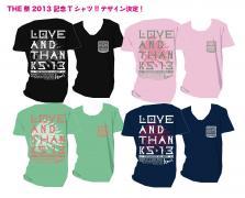 2013t-shirts2.jpg
