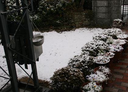 雪2011.2.11